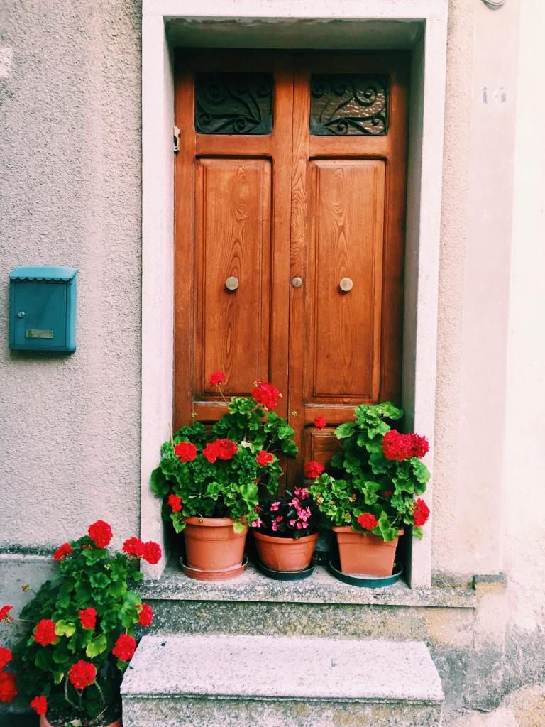 Doorway with flower posts of red flowers in Jelsi