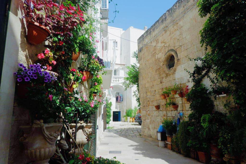 A street in Monopoli, Puglia, with flowers covering the left side of the image. A white washed building is centre background and a yellow sandstone wall is on the right, with bushes growing up it.